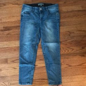 Wit and wisdom ab solution jeans 8P
